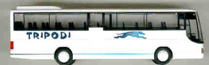 Rietze Setra S 315 GT Tripoldi Reggio Calabria I